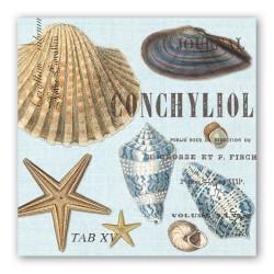Pochette de 20 serviettes carrées  - Seashells