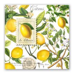 Pochette de 20 serviettes carrées - Lemon Basil