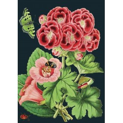 Carte double GM et enveloppe - Midnight Botanical (geranium)
