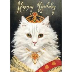 Carte double GM et enveloppe - Happy Birthday - King Cat