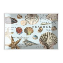 Coupelle rectangulaire en verre - Seashells
