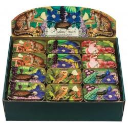 Mini boîtes en métal présentoir 36 ass - Madame Treacle - Whimsical G