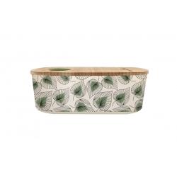 Lunch box 500ml en matiere vegetale Line Art Leaves - Bioloco Plant