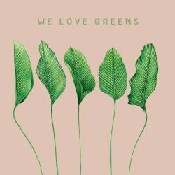 20 Serviettes 100% Bambou 33x33 cm We Love Greens - Chic Mic