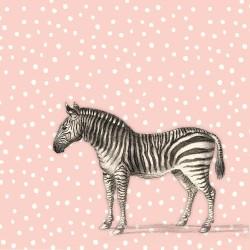 20 Serviettes 100% Bambou 33x33 cm Zebra - Chic Mic