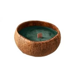 Bougie naturelle dans coquille de noix coco Forest Green - Chic Mic