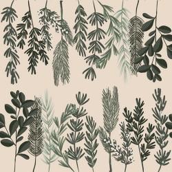 20 Serviettes 100% Bambou 33x33 cm Ferns - Chic Mic
