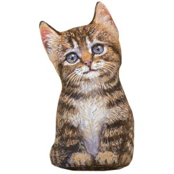 Cale-Porte Chat MM 'Brown Tabby Kitten'