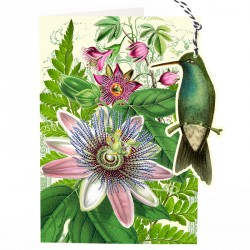 Carte double GM & env. 'FANDANGLES' (humming bird)