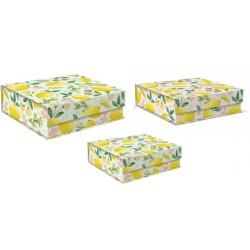 Set 3 boîtes carrées GM 'Botany Yellow'