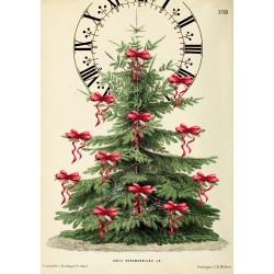 Carte double GM & env. 'XMAS TREE'