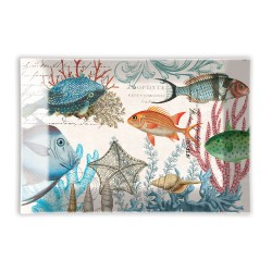RECTANGLE GLASS SOAP DISH - SEA LIFE