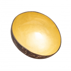 Deco Coconut Bowl - Chic Mic Shiny Petrol