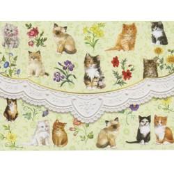 Pochette Correspondance 'Kittens'