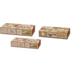 Set 3 boîtes plumiers 'Corkboard Curiosities'