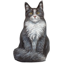 Cale-Porte Chat GM - Blue Maine Coon