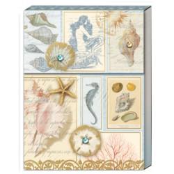 Pocket carnet de notes 'Gallery Shells'