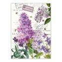 Lilac & Violets