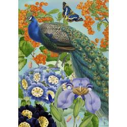 Carte double GM & env. 'WHIMSICAL' (peacock)