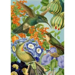 Carte double GM & env. 'WHIMSICAL' (birds)
