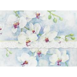 Pochette Correspondance 'White Orchids'